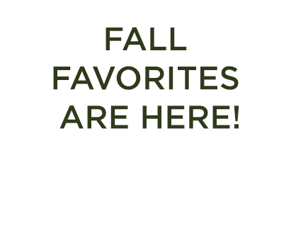 olive-lucy-slide-fall-favorites.png